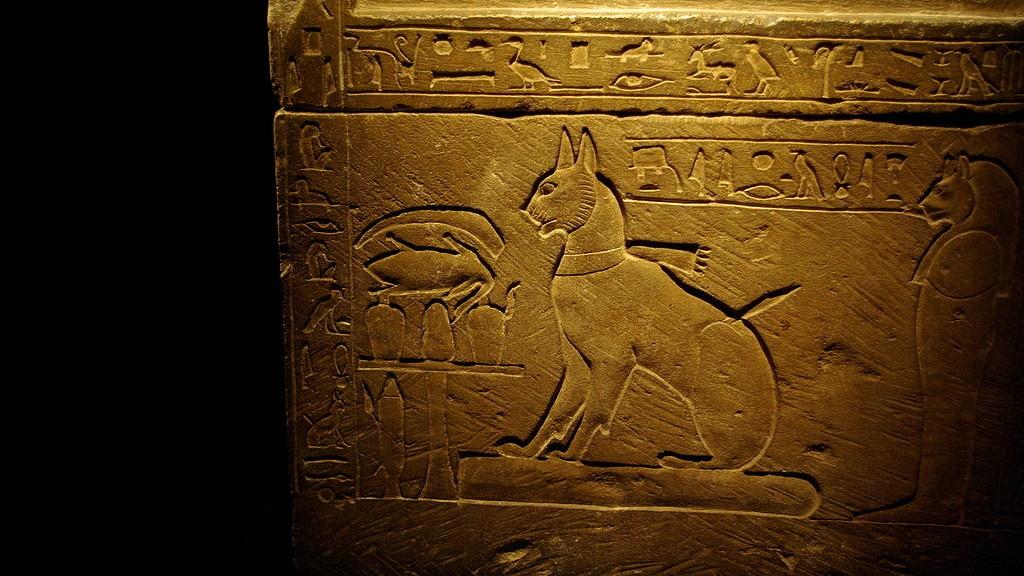 Chat sur le sarcophage du prince Thutmosis